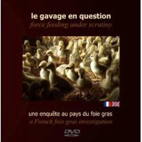 LE GAVAGE EN QUESTION